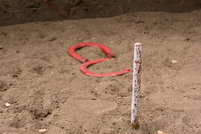 A pair of horseshoes in a horseshoe pit.