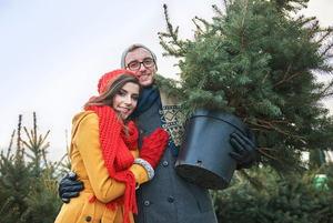 DIYs for an Eco-friendly Holiday