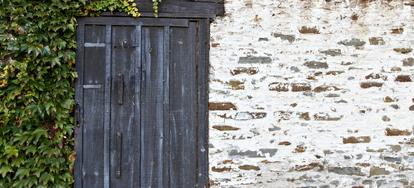An environmentally friendly paint alternative diy lime - Alternatives to painting walls ...