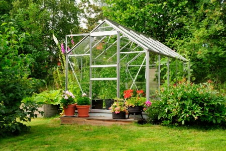 Build your own green house planning for Build a green home