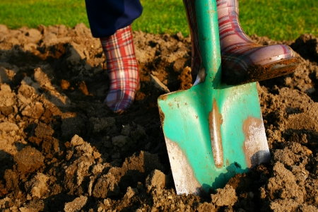 Improve clay soil in 5 easy steps for Soil yourself