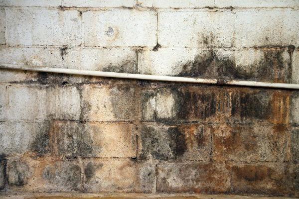 basement waterproofing basement membranes explained doityourself