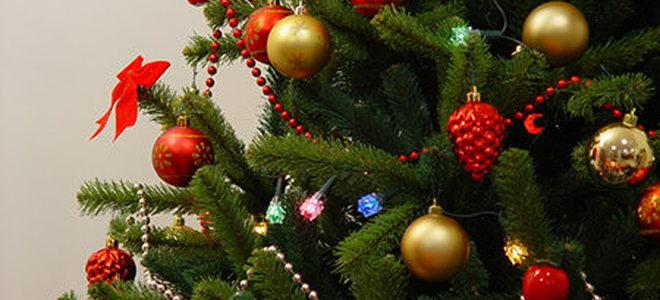 Christmas Tree Make Last Longer : How to make your tree last longer doityourself