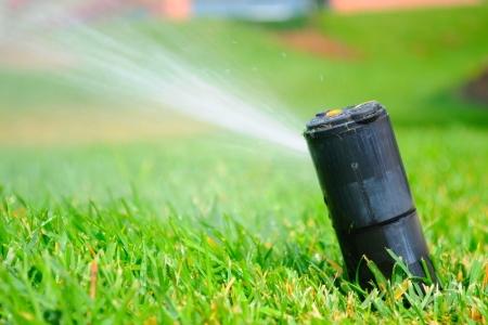 How To Change Sprinkler Heads Doityourself Com