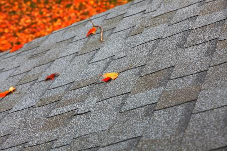 How To Clean Mold Off Roof Shingles Doityourself Com