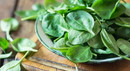 Spinach_000050663490_Small.jpg
