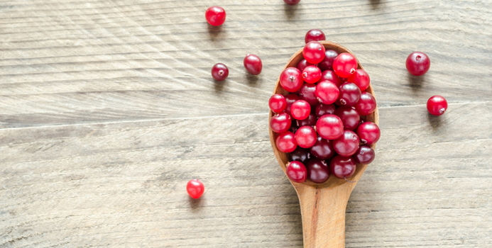 cranberry_000039576008_Small.jpg