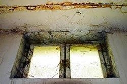 Mold and Mildew around Window