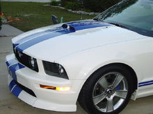"""Driver's Front Corner. Good View of the CDC """"classic"""" Chin Spoiler.  AKA.... Bug, Stone, Curb, Speed bump, Unusually Thick Road-Kill CATCHER... LOL. :) We did have this painted with a flexable additive in the paint, SO, it IS quite durable"""