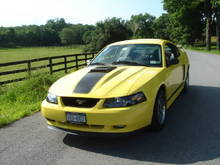 03 Mustang Mach1 (zinc yellow)  I bought it in late June 09 with just over 8,000 miles.