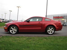 Angies 2008 Stang 2