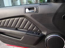 Driver Door Panel