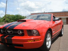 pony package grille, roush hood scoop, Hood pins