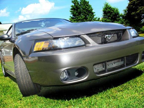 Cobra Bumper Fogs Closeup.