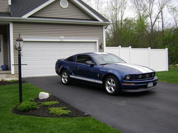 Mustang 2010 004