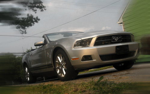 My New Mustang