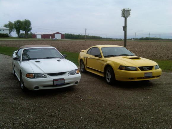Last picture of the Cobra and the GT together