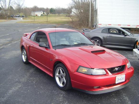 Mach 1 Grill Delete and Chin Spoiler...