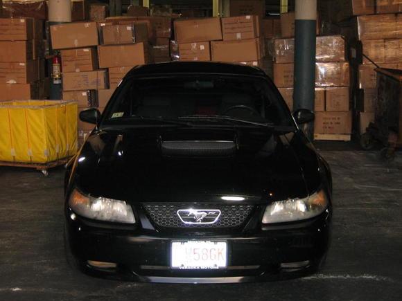 2001 Mustang GT 002