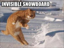invisible snowboard 2
