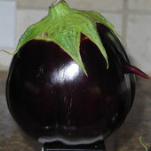 My eggplant has a nose