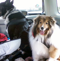 """Bookends"".....On our way to Michigan  =D"