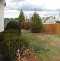 Right side-yard looking to rear of lot.