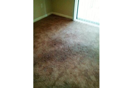Fieldstone Apartments Memphis Tn Reviews