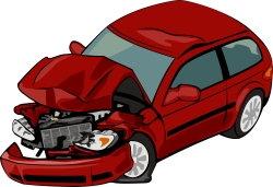 deer-vehicle collsions