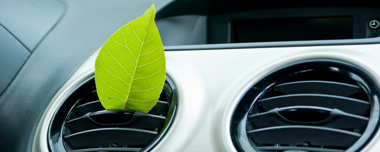 Make Sure You Have a Clean Cabin Air Filter - Banner