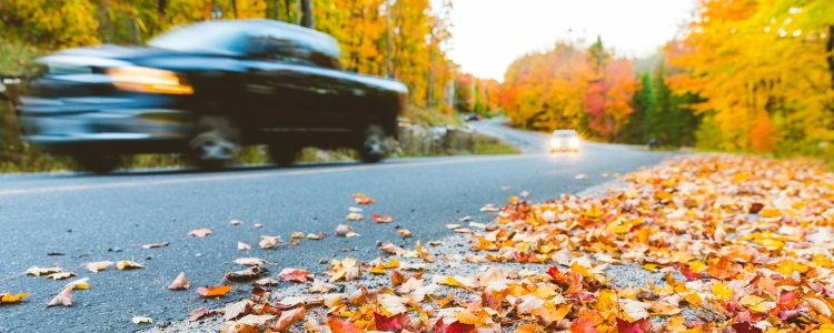 6 Top Fall Driving Safety Tips - Banner