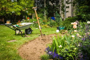 A backyard garden with a wheelbarrow and shovel.