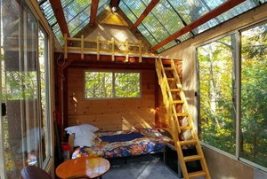 A treehouse with transparent walls and ceiling