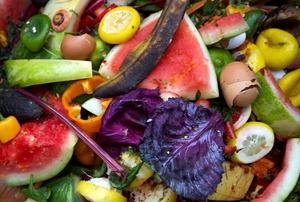 bright colored compost