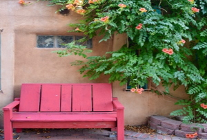A red bench on a patio in the southwest surrounded by a green vine and a potted herbs.