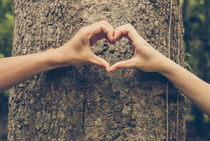 A man and woman make a heart sign with their hands in front of a tree.