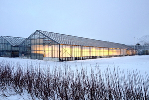 Large greenhouse in a field of snow
