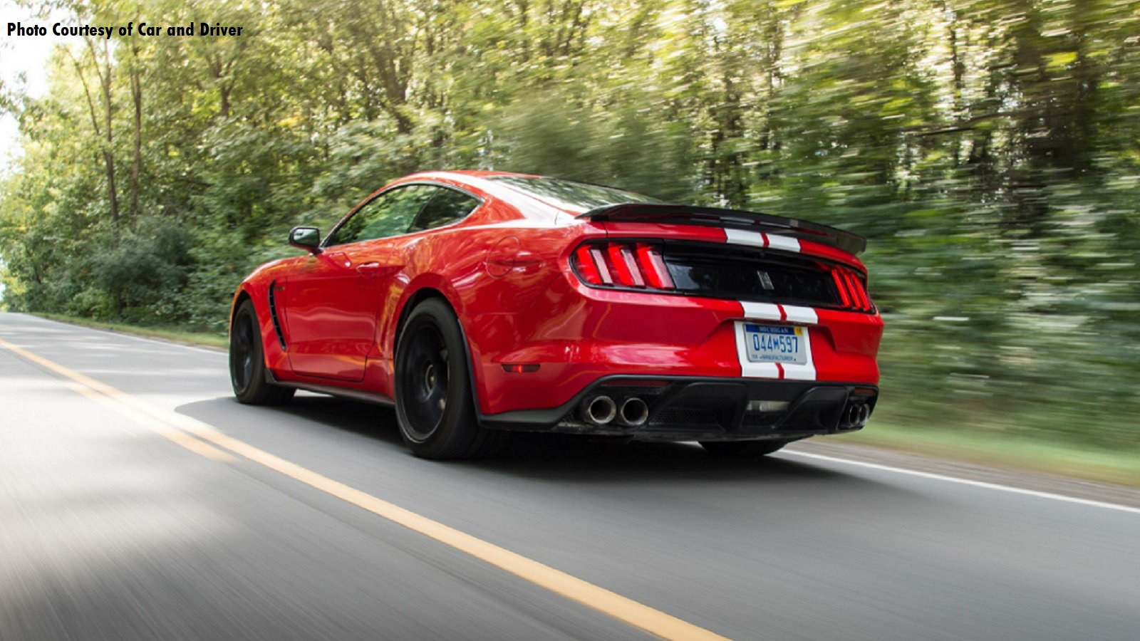 Grand Sport C7 vs the Shelby Mustang GT350