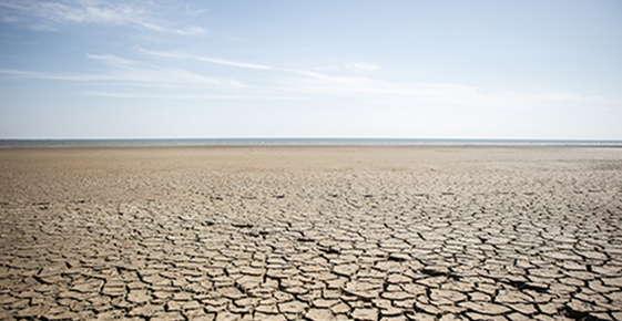 Image of a desert.
