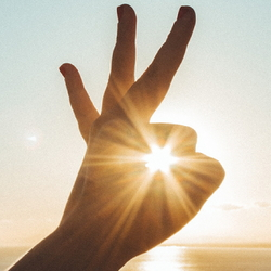 hand with sun shining through the fingers