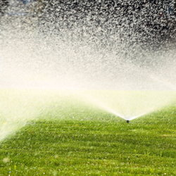 Sprinkler system watering yard