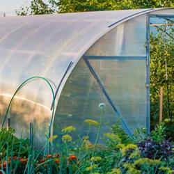 Hoop House in Garden