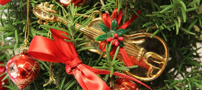 Live rosemary plant with seasonal decorations