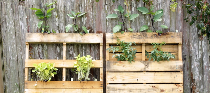 Your Favorite Wood Pallet DIY Garden Projects All In One Place