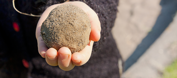 Mud Ball in Hand