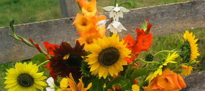 summer bouquet with gladioli