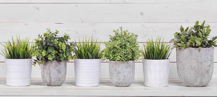 concrete planters in front of white wood background