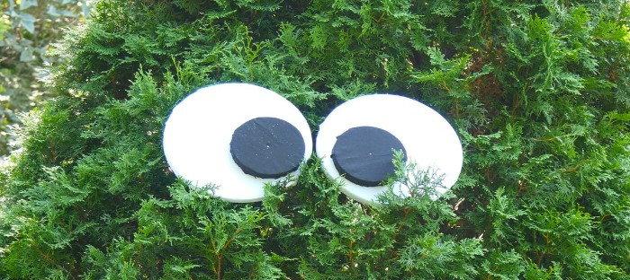 easy eyeball decorations