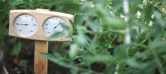 Humidity and Temperature Meter Planted in a Garden