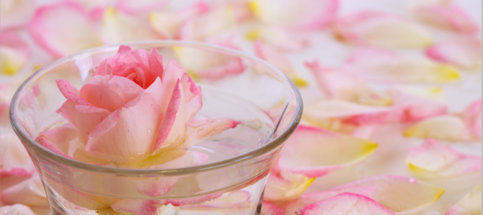 Pink Petal Steeped in Glass Saucer